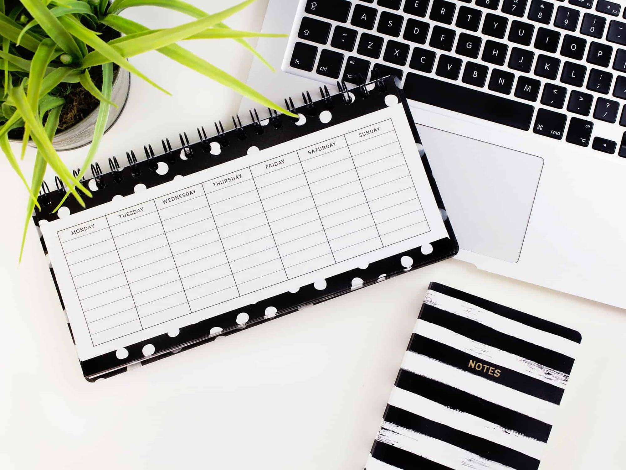 create a development schedule